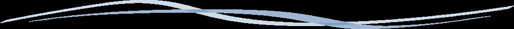 Blue line divider